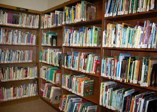 LibraryBookshelf[1]