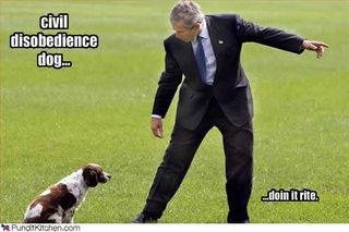 Political-pictures-george-bush-civil-disobedience-dog[1]