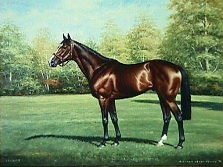 Thoroughbred-reeves[1]